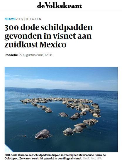 Schildpadden_Volkskrant