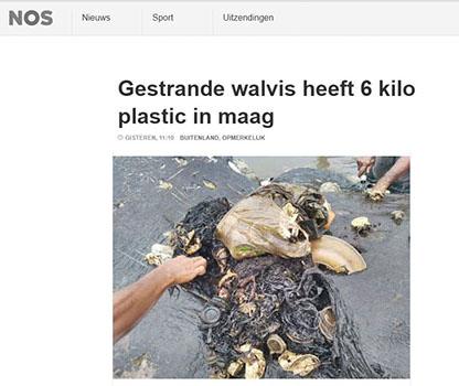 NOS nieuws artikel: Gestrande potvis heeft 6 kilo plastic in zijn maag